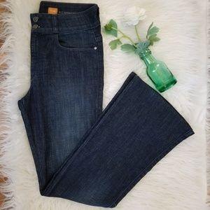Anthropologie Pilcro Superscript Flare Jeans.